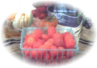 Life Sized Berries