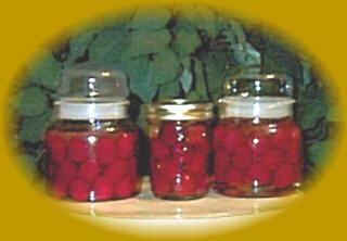 8oz Jelly Jars